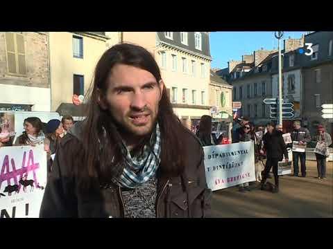 La tension monte entre pro et anti-chasse à courre à Saint-Brieuc