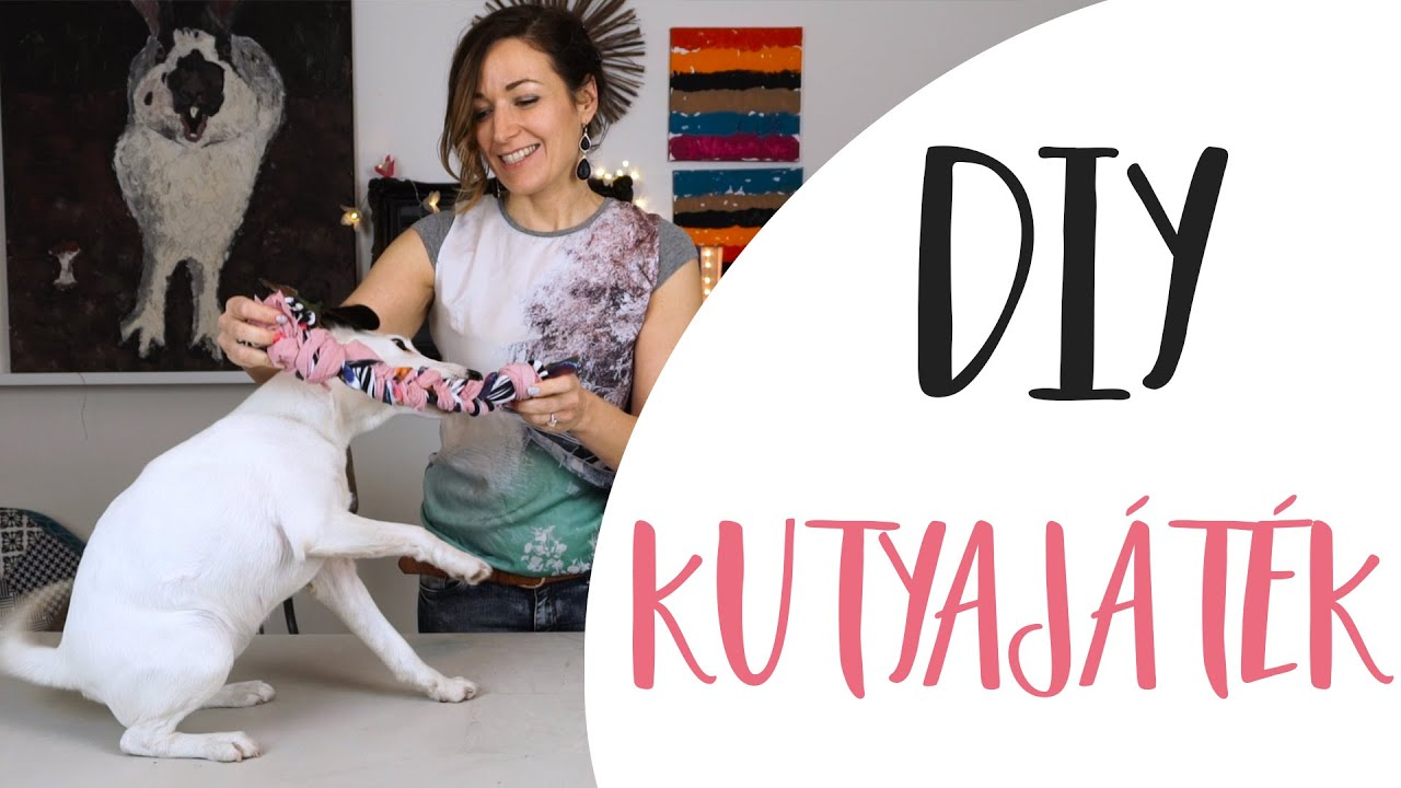 dda5a30a7e DIY Kutyajáték fillérekből | Kreatív újrahasznosítás- INSPIRACIOK.HU ...