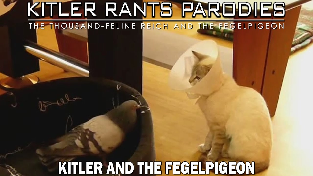 Kitler and the Fegelpigeon