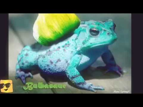 POKEMON IN REAL LIFE!(Bulbasaur,pikachu,Squirtle and more ...