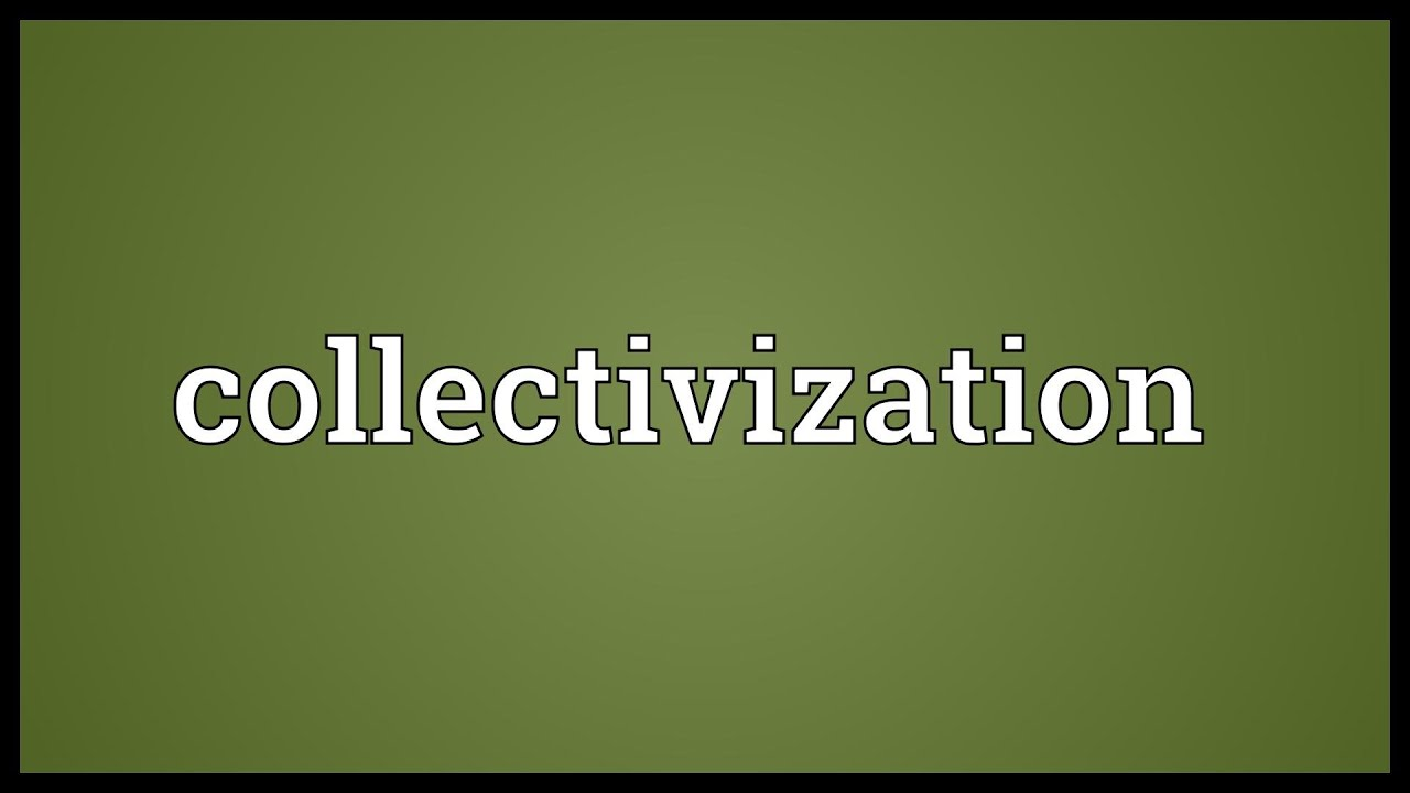 What is collectivization