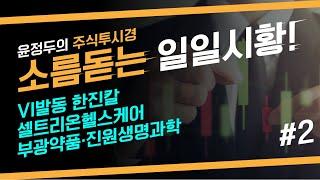 VI발동 한진칼 & 셀트리온헬스케어 & 부광약품 & 진…