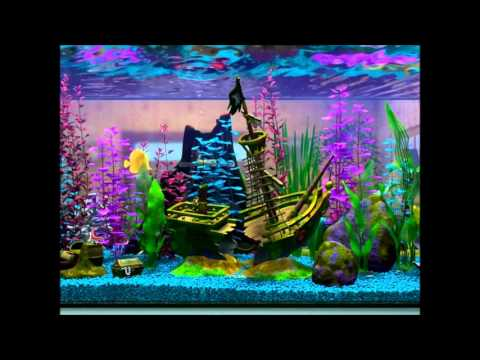 finding nemo virtual aquarium shipwreck day youtube