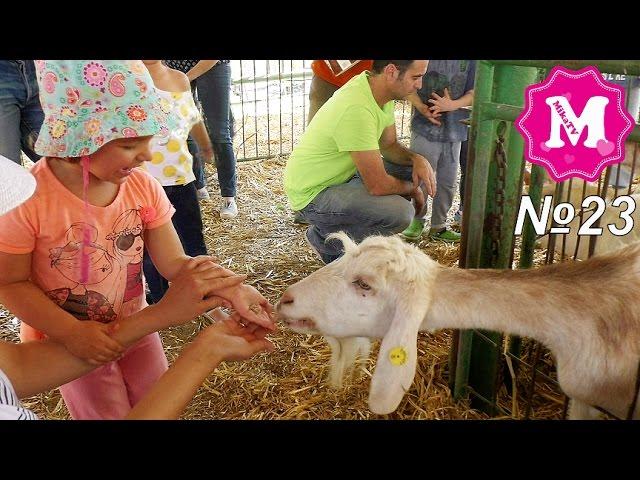 מיקאלה בחוה גבעת ברנר סרט לילדים חווה 2016 Mika Miracle video