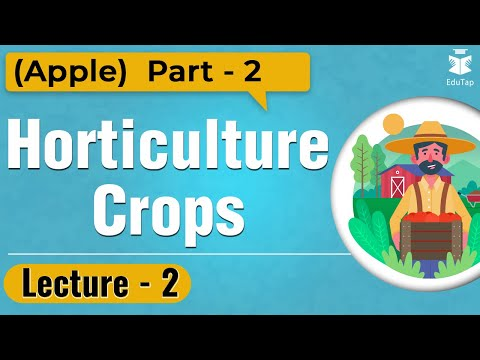 Everyday at 5 Series – Lecture 2 – Horticulture Crops (Apple) Part 2