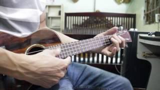 Con Bướm Xuân ukulele solo