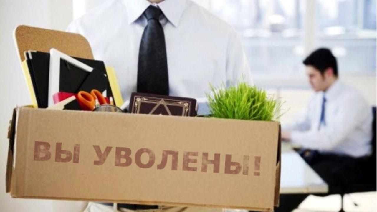 FAQ: что делать, если уволили или сократили, как получить выплаты