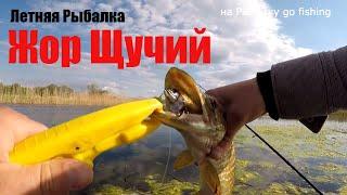 ЖОР Щуки Давно я так не ловил Рыбалка 2020 Ловля щуки на Воблер