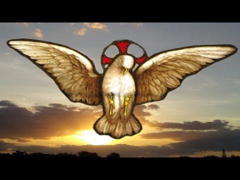 Rosario al Espiritu Santo de Dios mueve las voluntades a favor del bien