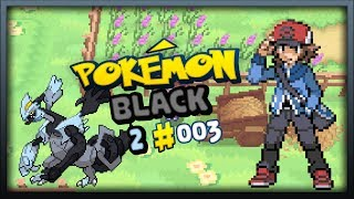 Pokemon Black 2 Episode 3: Flocessey Ranch and Route 20!