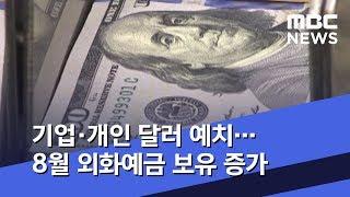 기업·개인 달러 예치…8월 외화예금 보유 증가 (201…