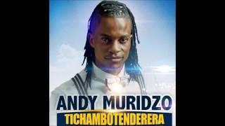 Andy Muridzo    Daira Tichambotenderera  Album  March 2017