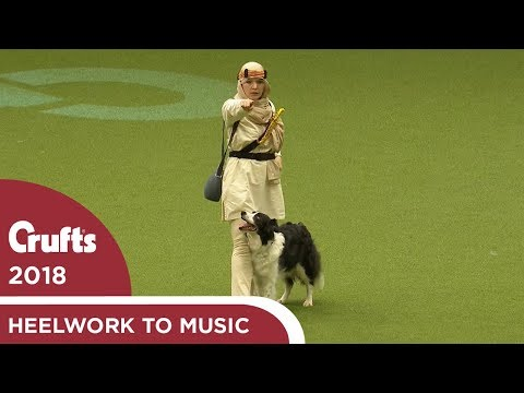 Heelwork to Music Competition Part 2 | Crufts 2018