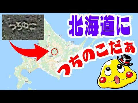 つちのこ 北海道