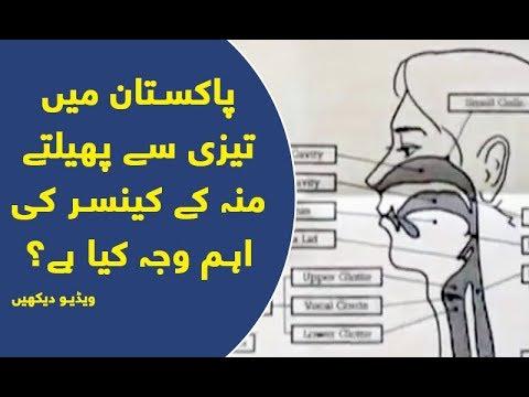 Pakistan mai Tezi say Phailtay Mou Kay Cancer ki Ahem Waja Kiya hai?