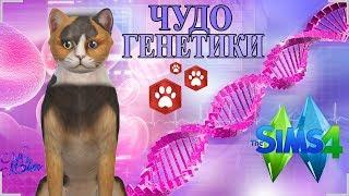 ★ The Sims 4 Кошки и Собаки: Challenge Чудо Генетики | КОТОПЕС ★