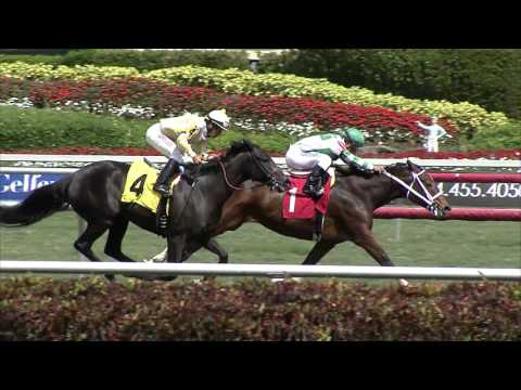 Gulfstream Park Replay Show | March 23, 2016