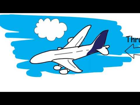 How Do Planes Stay In The Air?