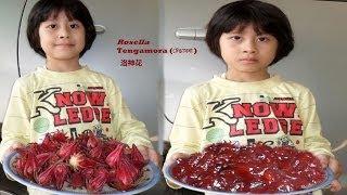 How to make Rosella fruit jam - টেঙামৰা - 洛神花
