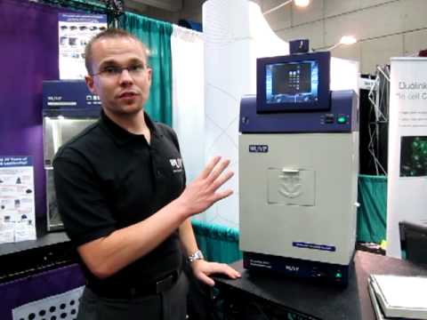 UVP BioDoc-It Imaging System