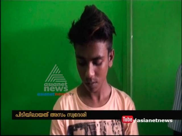 Fake ID card making for inter-state workers at Perumbavoor; Main culprit arrested