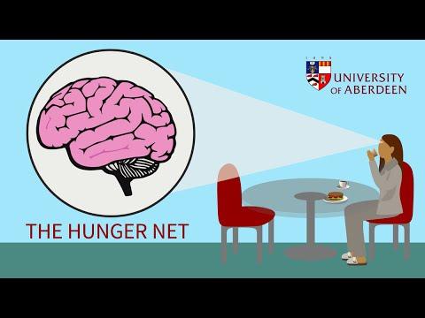hunger net