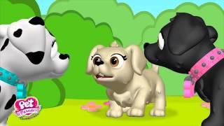 Pet Parade CiciKöpecikler - Madalyon