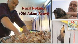 Sokak Hayvanları İçin Aşevi Açan Koca Yürekli İş Adamı Nazif Hekim...