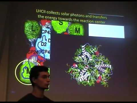 Design Principles in Photosynthetic Light Harvesting: Experimental Developments - Tjaart Krüger