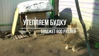 Будка для собаки, утепляем пеной и забором.