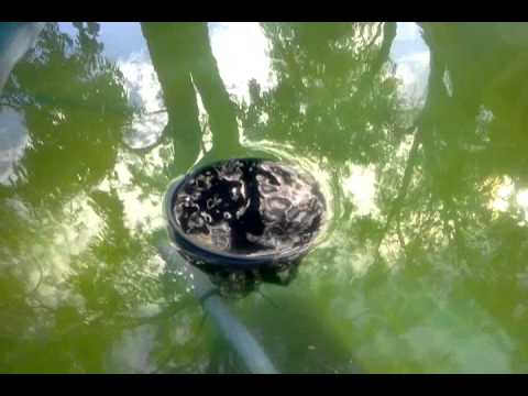 Diy Inground Pool >> DIY automatic pool skimmer - YouTube