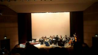 Salzburg Youth Chamber Orchestra, Johann Strauss, Roses from the South