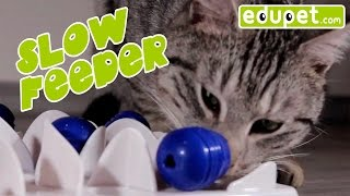 edupet.com - best cat toys - SLOW FEEDER