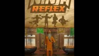 Ninja Reflex NDS