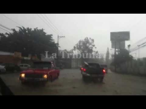Lluvias provocan inundaciones y caída de muros y árboles en la capital
