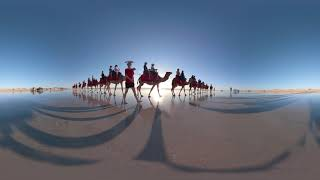 Camel Rides in Broome, Western Australia