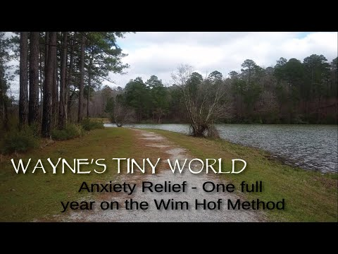 Anxiety Relief One Year on the Wim Hof Method