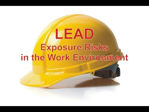 Lead Exposure Risks in the Work Environment