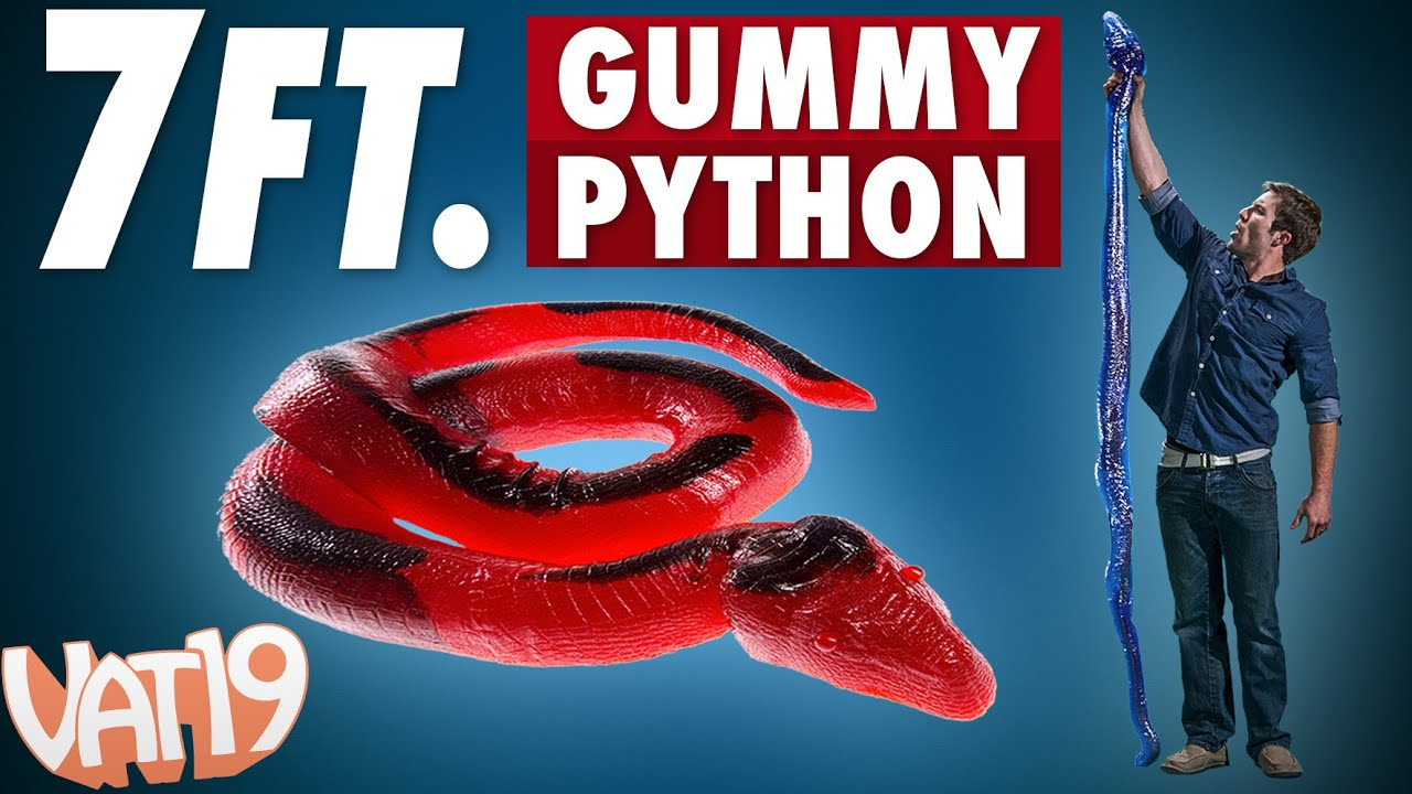 pound gummy python is a foot long candy snake youtube