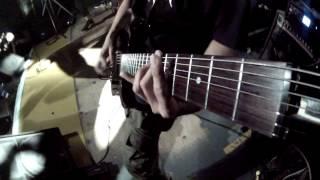 hammerhead shark - cola - 25/08/2013