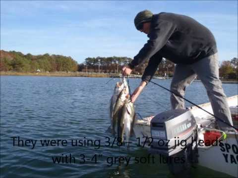 Big speckled sea trout in rudee inlet nov 19 2011 youtube for Rudee inlet fishing report