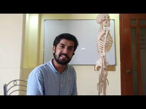 upper-cross-syndrome-||-demo-||-model-||-urdu-||-cmt