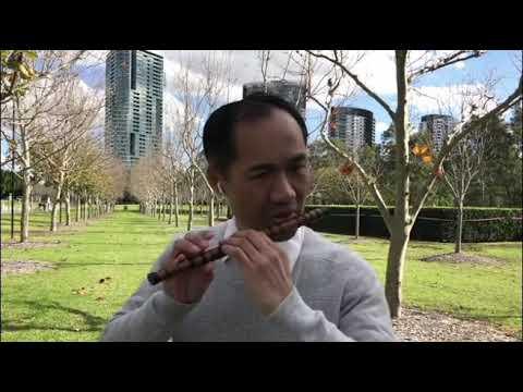 Paul Wu演奏的笛子独奏曲-扬鞭催马运粮忙,