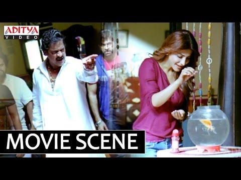 Ramayya Vasthavayya Movie - Ravi Shankar Crazy About Shruti Haasan - Jr.NTR, Samantha, Shruti Hassan
