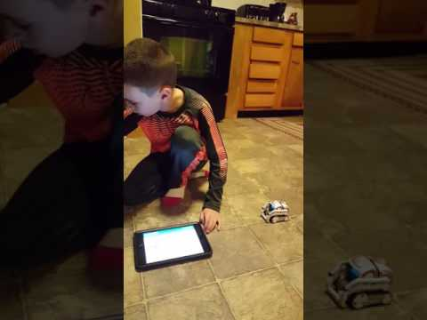 World's cutest robot cozmo!