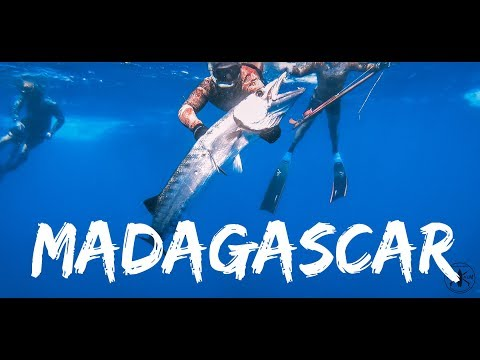 Spearfishing Trip To Madagascar Nosey Be