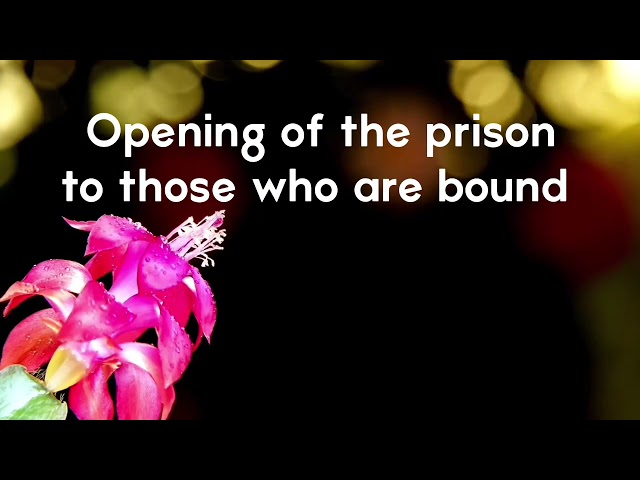 Opening of the prison