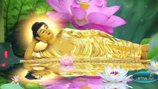 Từ Ngày Mùng 1 Đến Mùng 10 Tháng 5 Nghe Kinh Này Được Phật Phù Hộ Cả Tháng Gặp May Mắn, Phát Tài