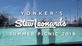Stew's Summer Picnic 2018