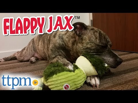 spot-flappy-jax-dog-toys-from-ethical-products